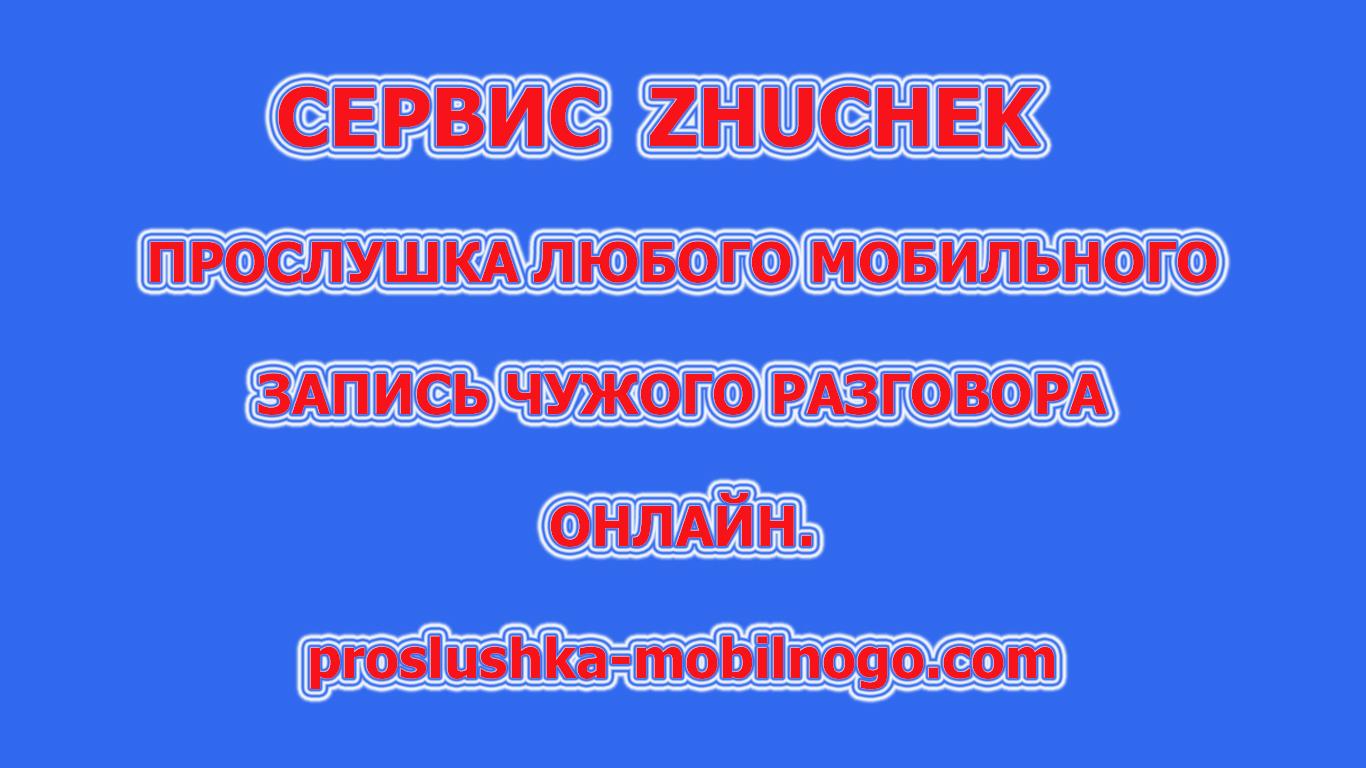 сервис zhuchek
